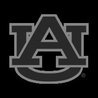 Auburn College Bands